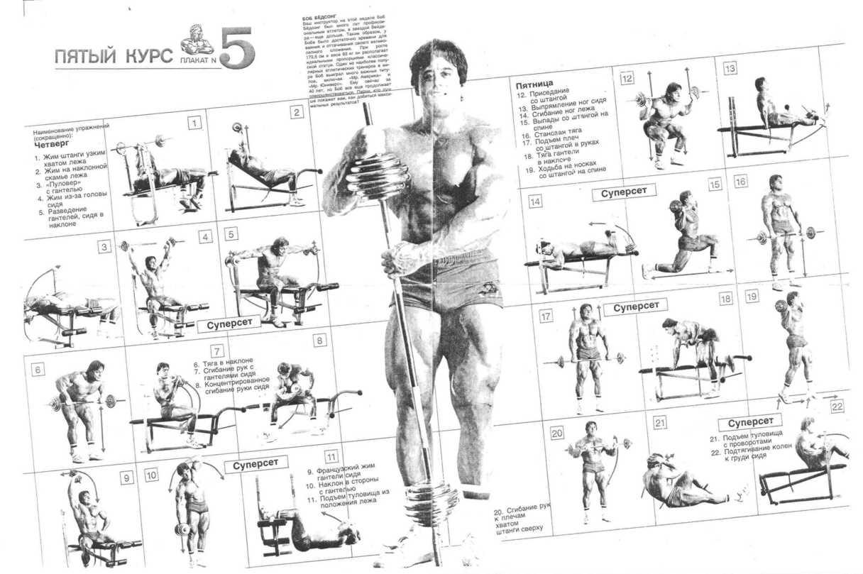 Упражнения со своим телом для мужчин